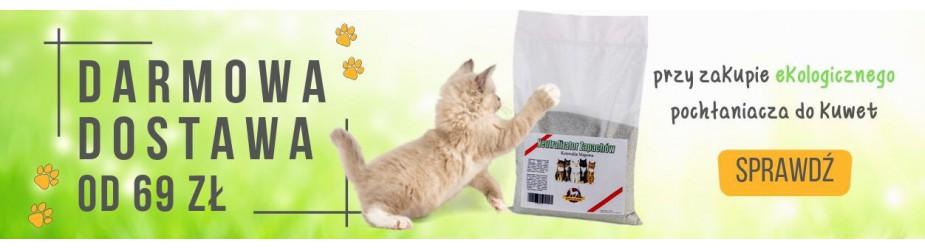 Obroże dla kota