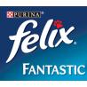 Felix Fantastic